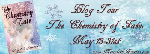 horizontal blog tour banner